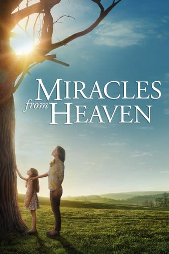 Miracles From Heaven [DVD]