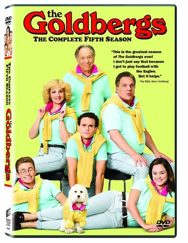 The Goldbergs: The Complete Fifth Season [DVD]