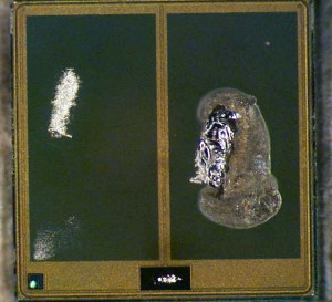 Sample 2 footprint of former wire bond