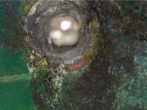 Burned conformal and solder mask