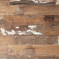 BEST - Sealand Pine - Swatch
