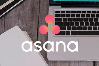 Asana Case Study