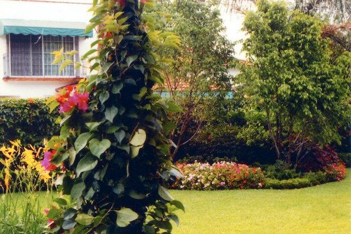 Arquitectura-De-Paisaje-Foto-Diseno-Jardin-Exterior-06_rlvwx8