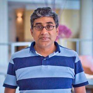 Ramnath Vaidyanathan Headshot