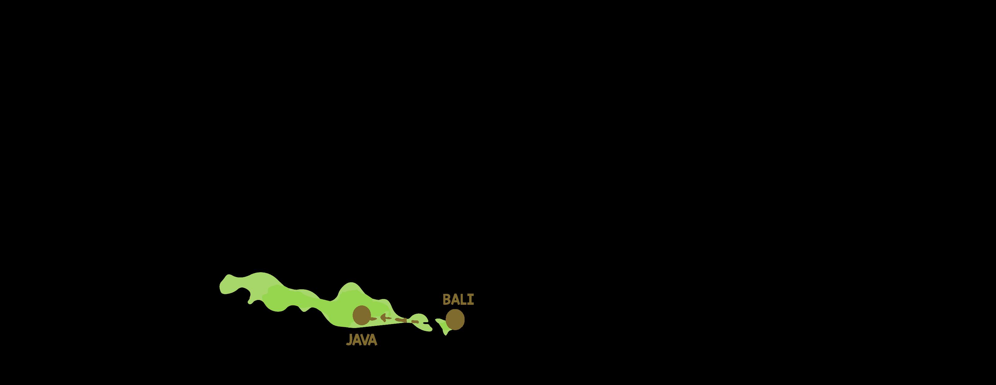 itinéraire voyage Indonésie Bali java