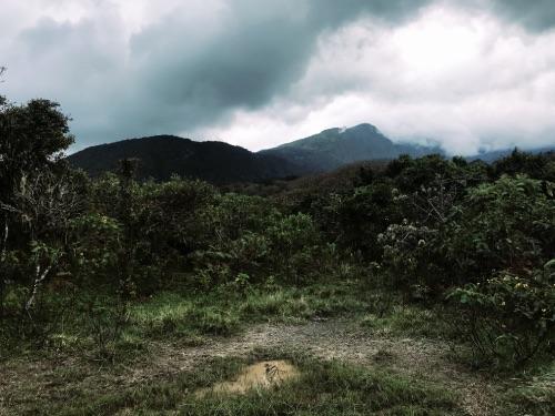 paysages Parc National d'Arusha