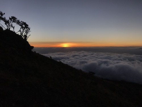 merveilleux coucher de soleil tanzanie nuit