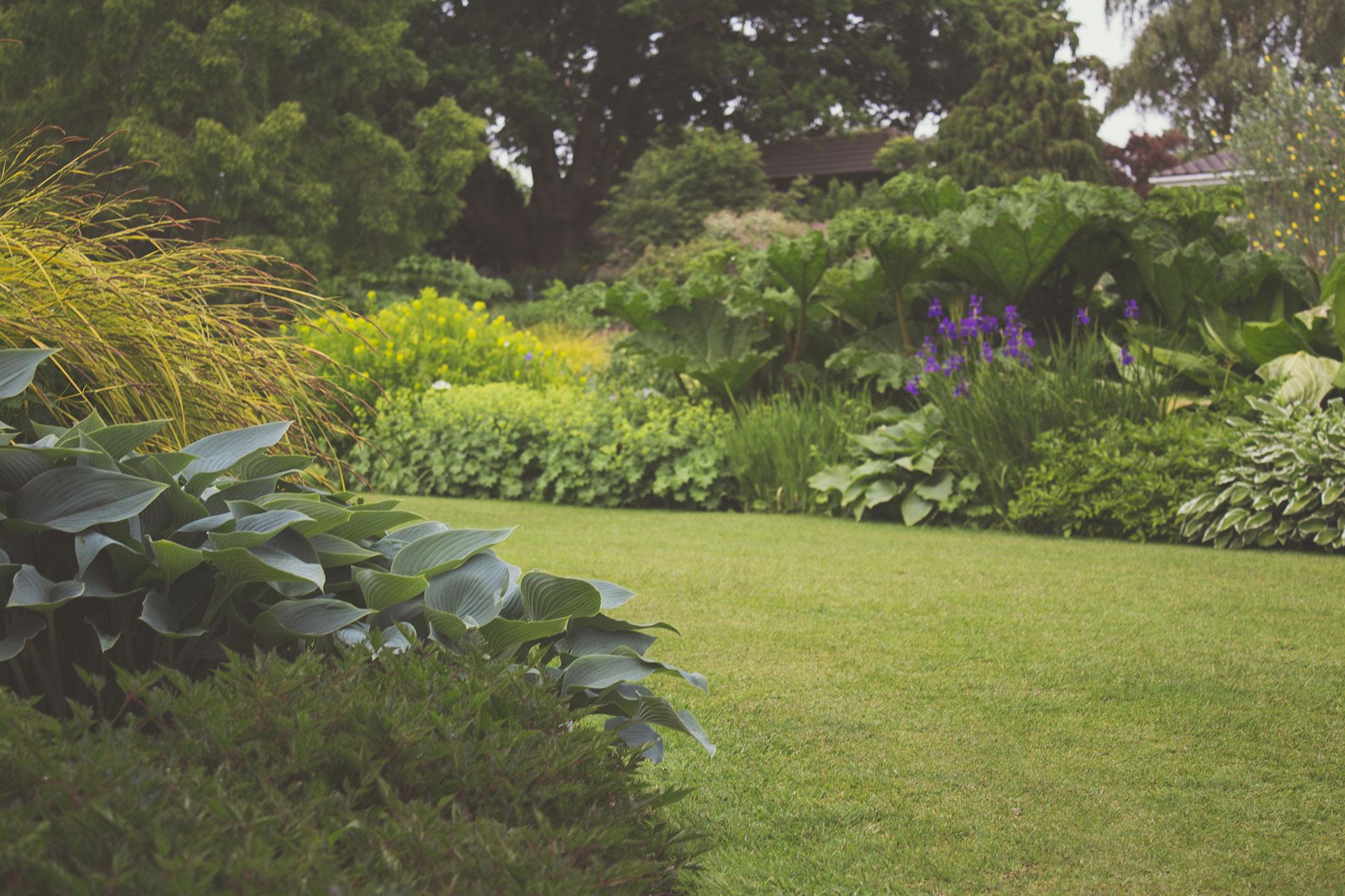 Gartenplanung vom Profi – Vorteile, Kosten, Tipps