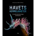 Havets Hemmeligheter av Erling Svendsen - Norsk