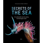 Secrets of The Sea - Havets Hemmeligheter (Eng)