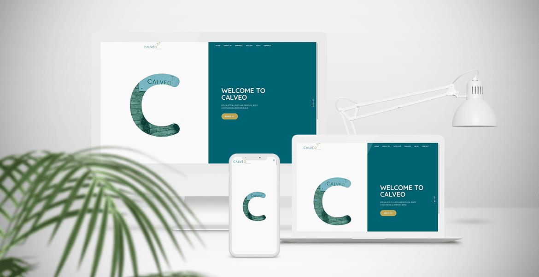 CALVEO website design mock-up