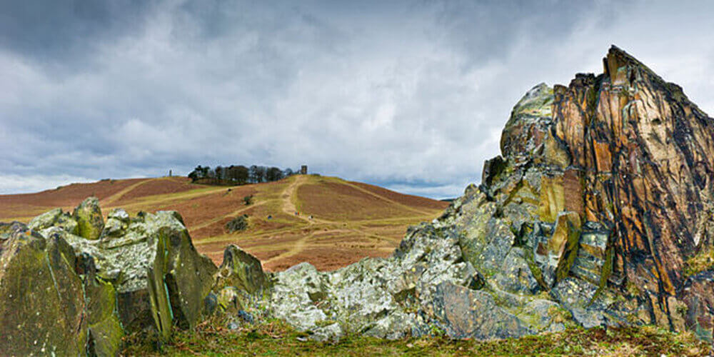 Bradgate Park in Leicester 8