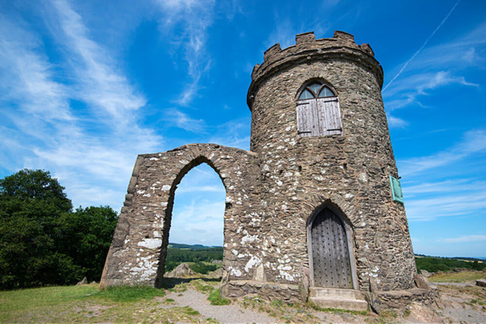 Bradgate Park in Leicester 14