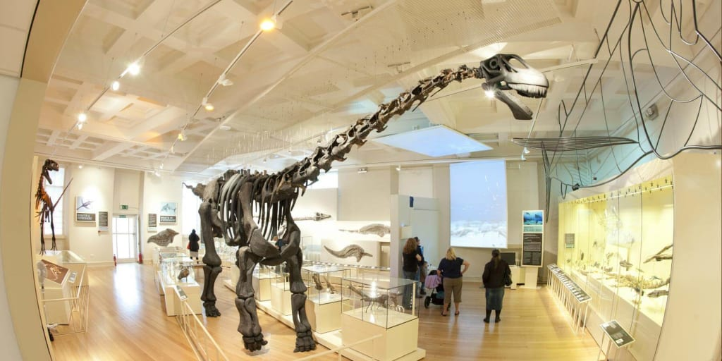 Leicester Museum and Art Gallery dinosaur