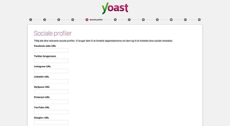 Guide til Yoast SEO plugin til WordPress: Wizard step 5