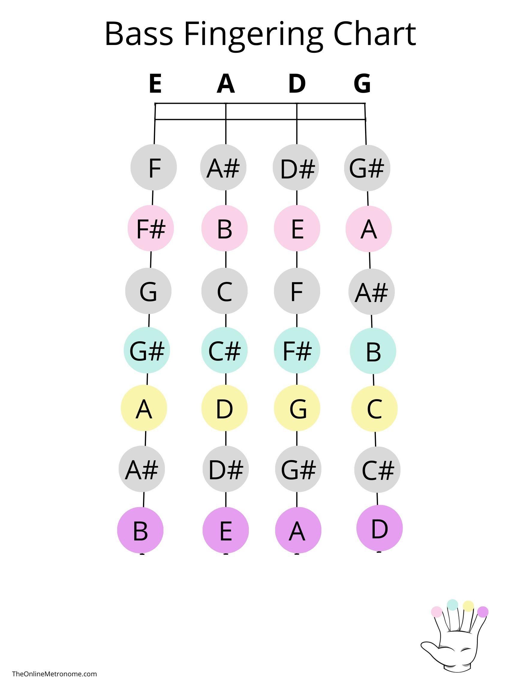 double-bass-fingering-chart.jpg