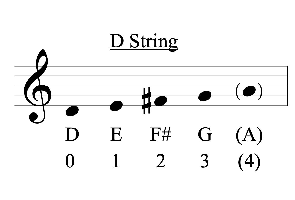 violin-d-string.png