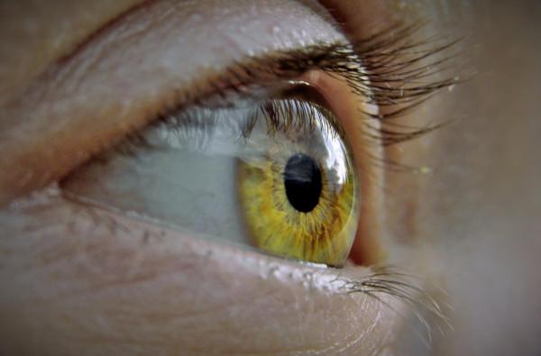 Nahaufnahme linkes Auge mit hellbrauner, fast gelber Iris und helleren Wimpern