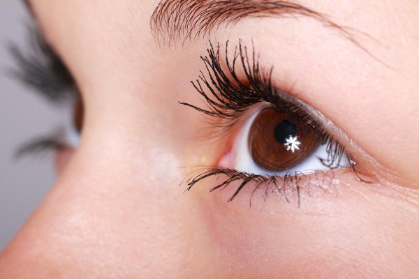 Nahaufnahme der Augen von rechts, mit dunkel brauner Iris und dunkel getuschten Wimpern