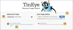 TinEye file options enumerated