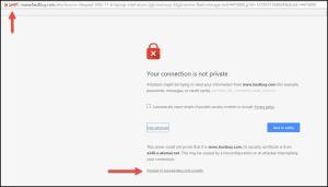 Best Buy SSL error