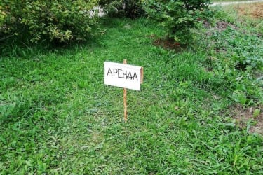 В Подольске стоимость аренды участка земли выросла в 50 раз на аукционе