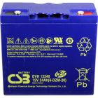 CSB Battery 12v 24 AH Deep Cycle Sealed Lead Acid AGM Battery
