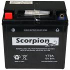 YT9A Scorpion 12v 130 CCA AGM Power Sport & Motorcycle Battery