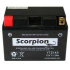 YTZ14S Scorpion 12v 220 CCA AGM Scooter & Motorcycle Battery
