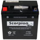 YT9A Scorpion 12v 130 CCA AGM Power Sport & Motorcycle Battery