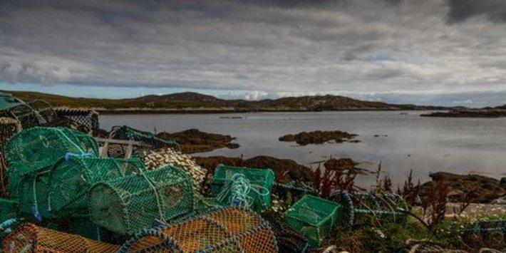 Hükümet, Bakanların Sektöre Öfkelenmesinin Ardından İskoç Balıkçılık Krizi Nedeniyle 'Direksiyonda Uyumakla' Suçlandı
