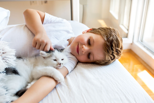 boy cuddling with kitten