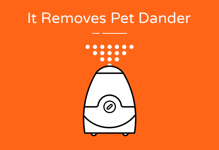 removes pet dander