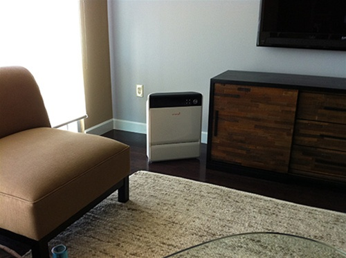 Max air purifier living room