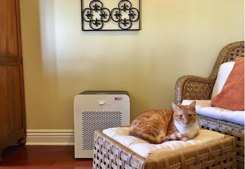 oransi air purifier for odor removal