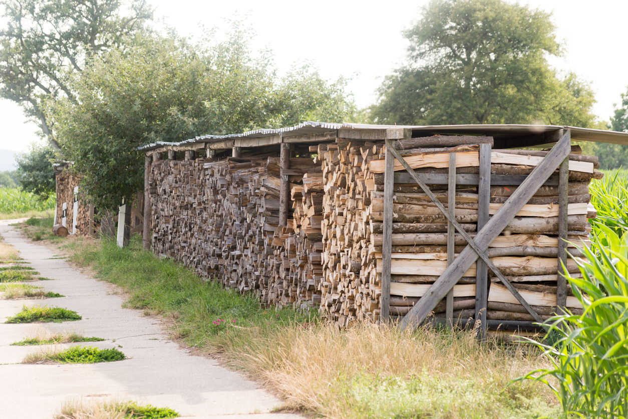 firewood stacked away from a home