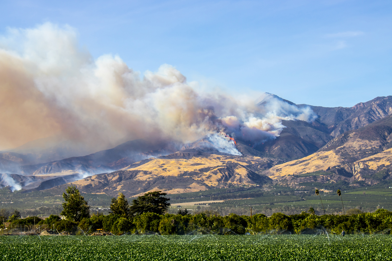 wildfire smoke in rural region