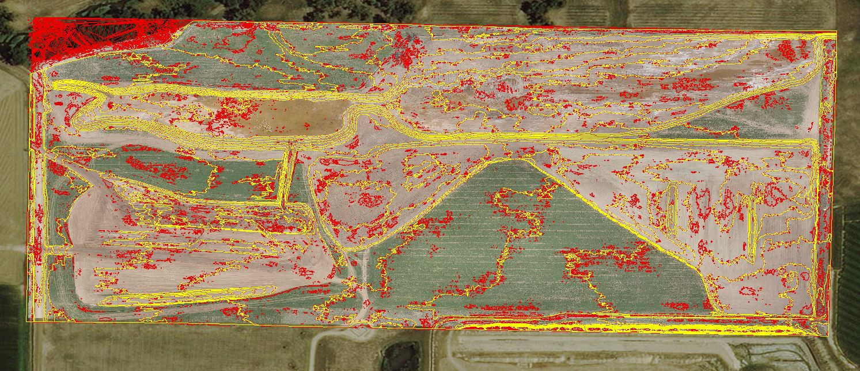 Surveyor Image