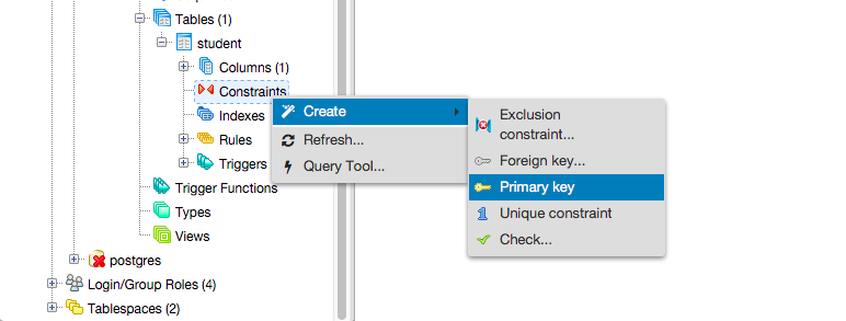 Create Primary Key Constraint