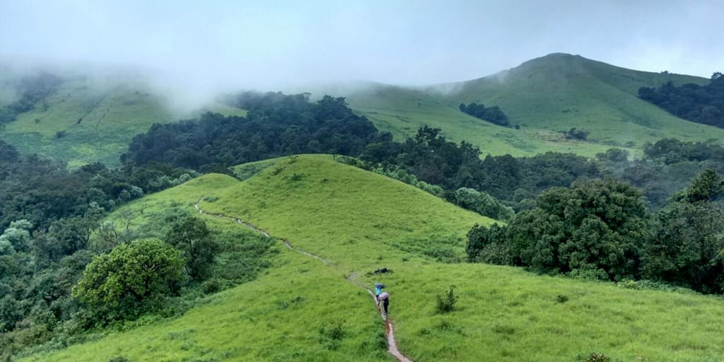 Trekking Places In Bangalore Kodachadri Trek