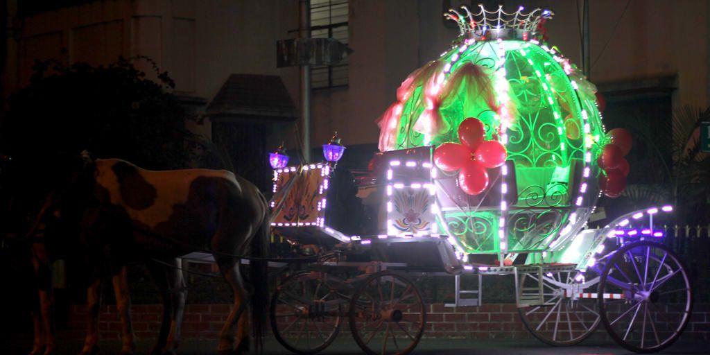fairytale romance with fairy horse nightlife in kolkata