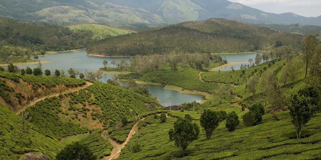 yelagiri hills near chennai
