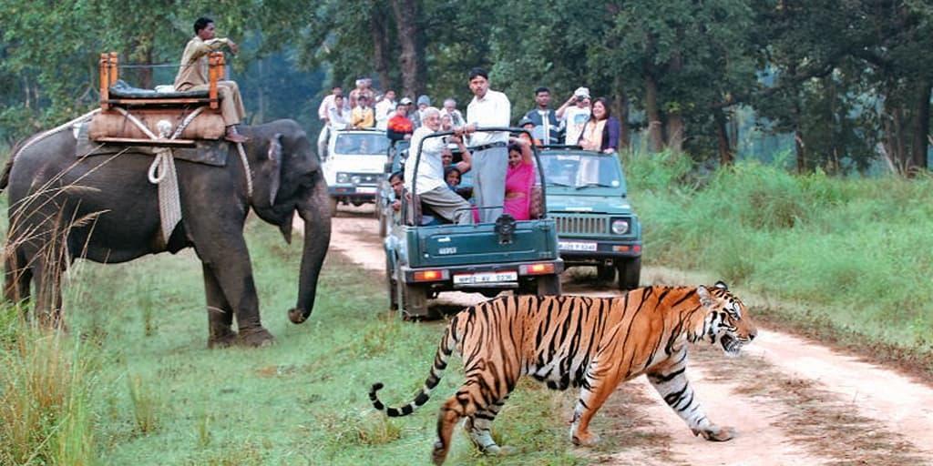 Asola Bhatti Wildlife Sanctuary Near Delhi