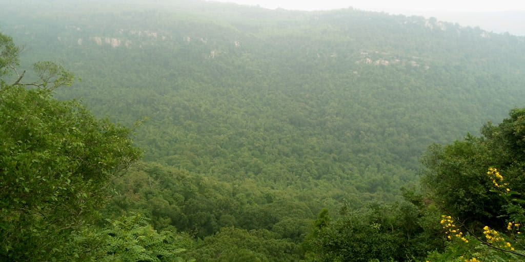 Venkateshwara Hills for Trekking in Chennai