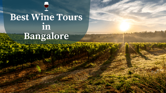Things to do in Bangalore - Wine Tours in Bangalore