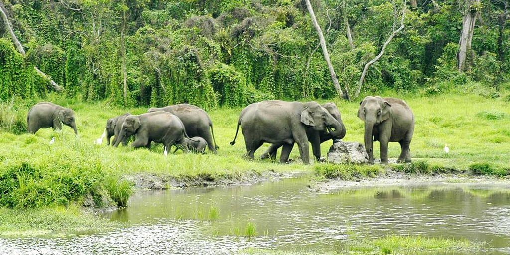 one day trips near Kolkata - samsing