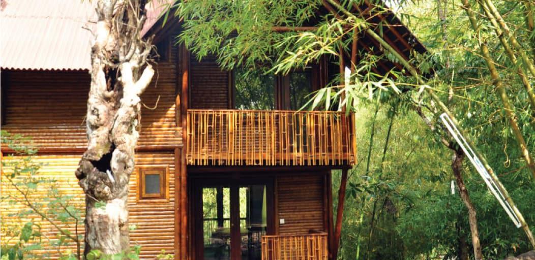 Places to visit in Wayanad in 2 Days - Thrikkaipetta