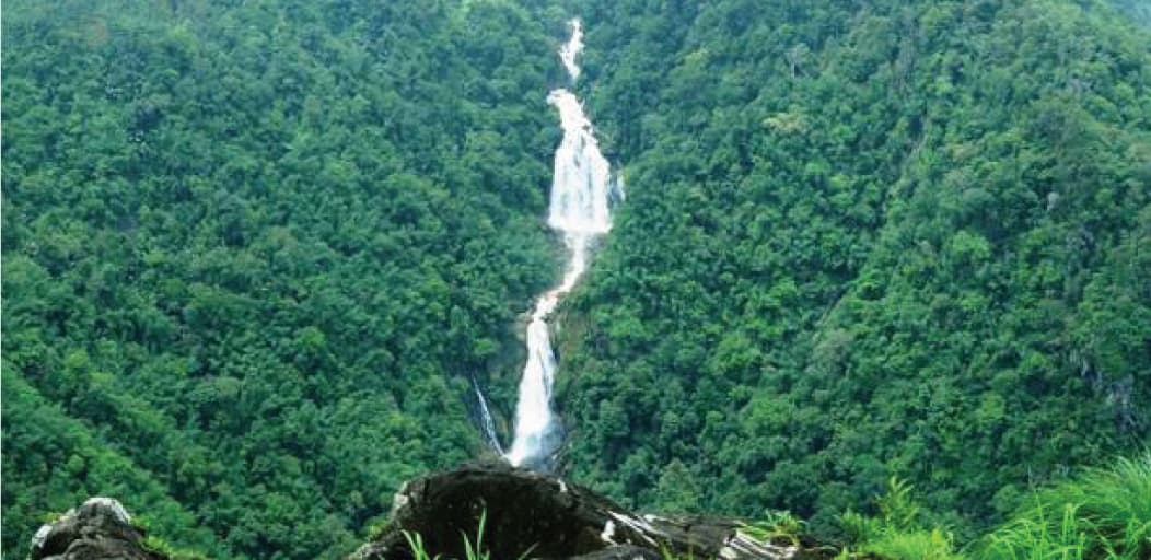 Places to visit in Wayanad in 2 Days - Meenmutty Falls