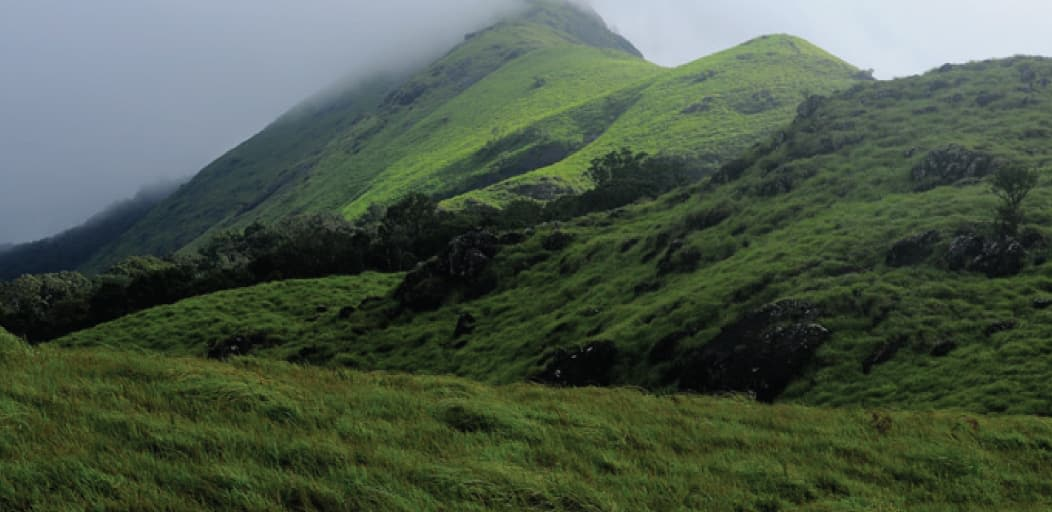 Places to visit in Wayanad in 2 Days - Chembra peak