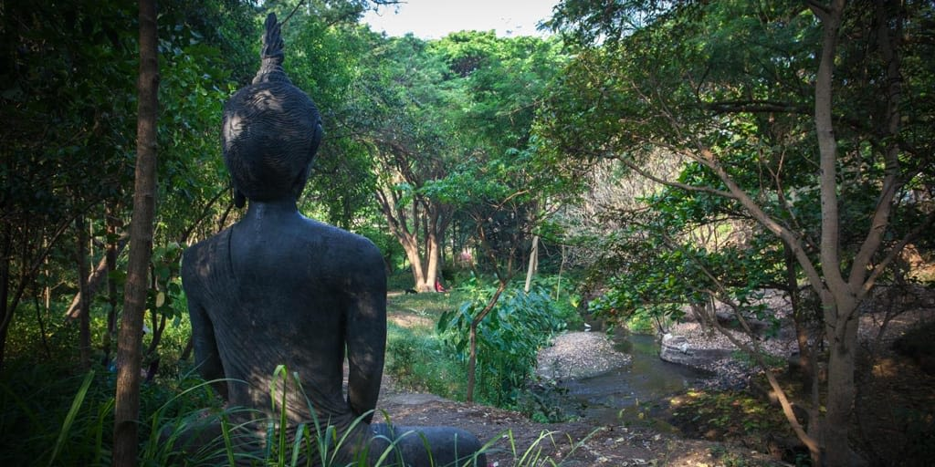 romantic places in Pune - Osho garden